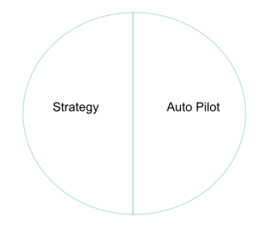 The opposite of strategy is auto pilot