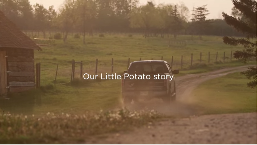 The LIttle Potato Company Core Purpose